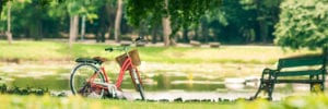 red bicycle down by a pond