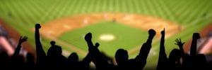 baseball fans celebrating
