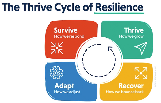 resilience cycle